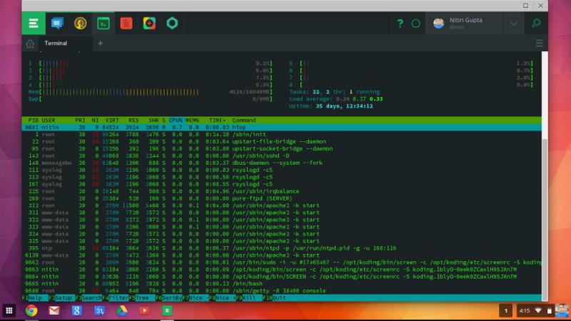 Koding Terminal Window